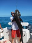March Madness is Coming!  Cobia Time!
