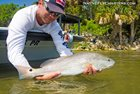 Native Fly Charters Flordia Summertime Fishing Fun
